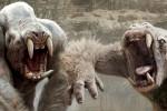 white apes