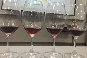 Pinot-Noir-Glasses