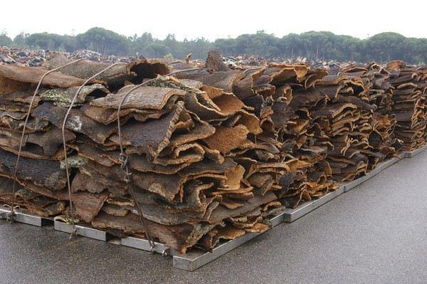 Cork bark seasoning