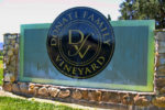 The Anomaly of Donati Family Vineyard