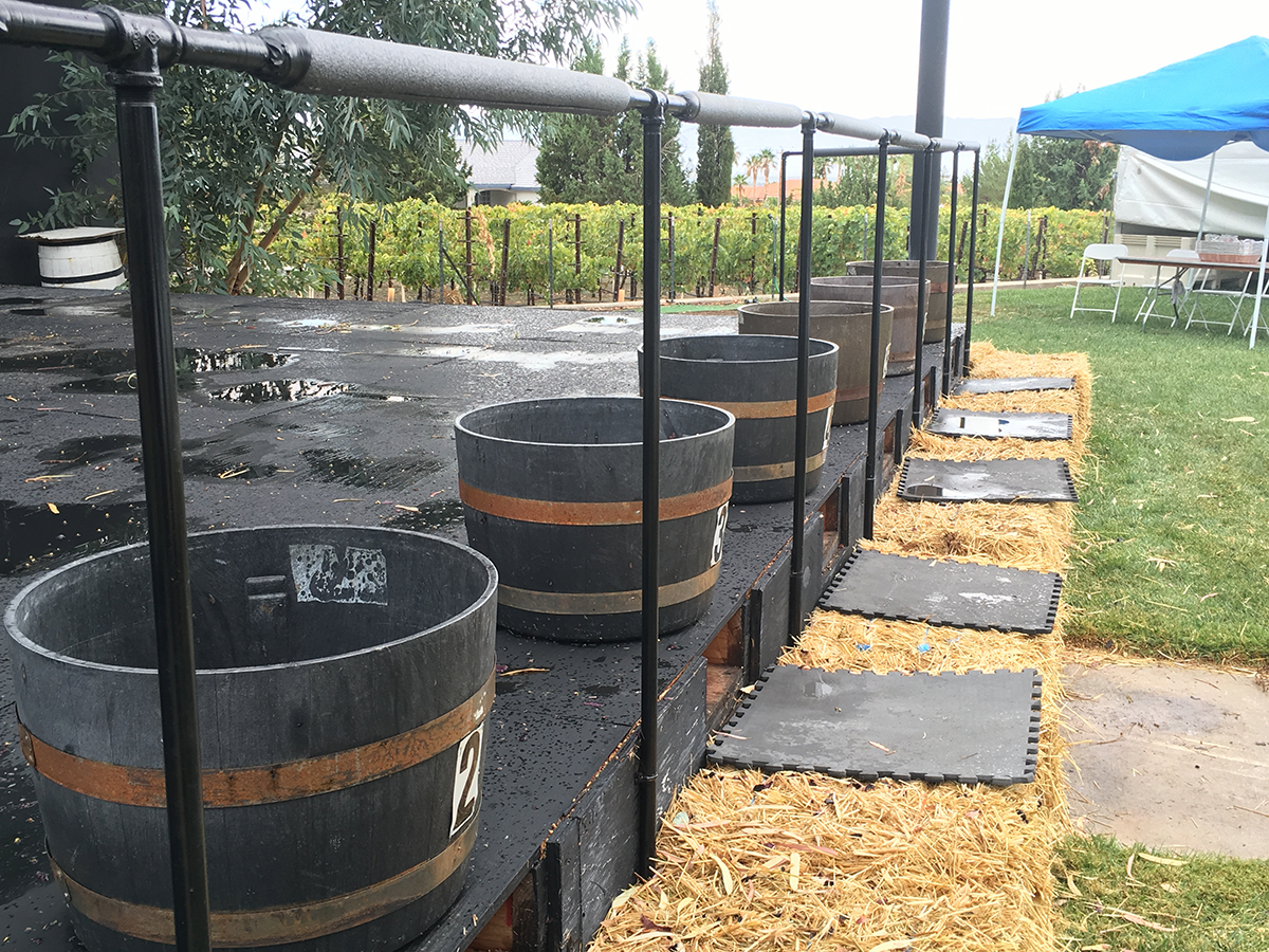 Pahrump Valley Winery – The Grape Stomp that Didn't Happen!