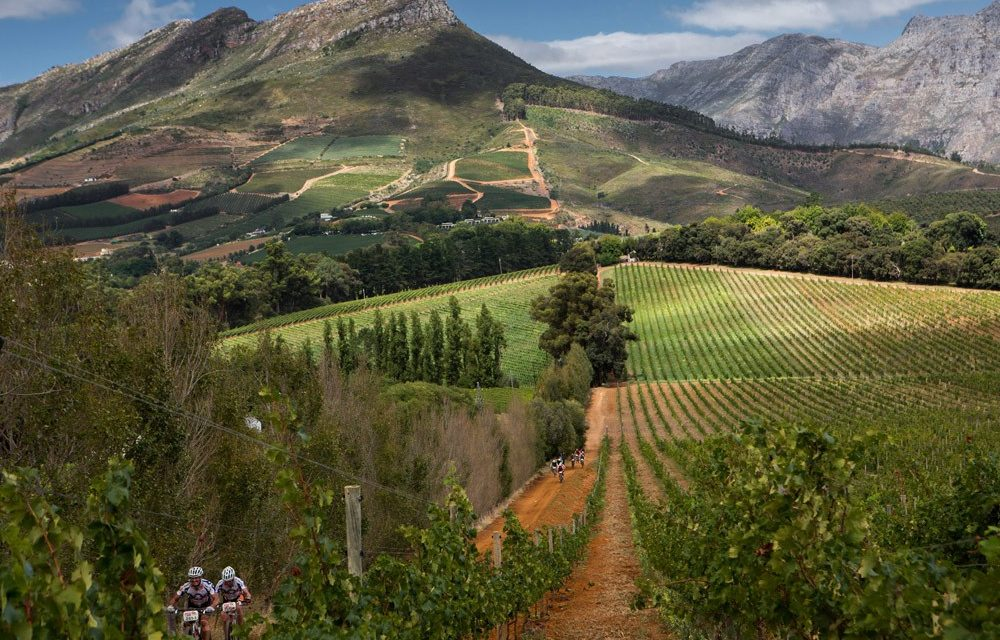 Dream Wine Travel! Destination? TBD.